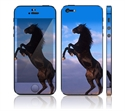 Picture of Apple iPhone 5 Decal Skin - Animal Mustang Horse