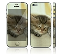 Picture of Apple iPhone 5 Decal Skin - Animal Sleeping Kitty