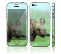 Picture of Apple iPhone 5 Decal Skin - Baby Elephant